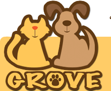 Miami Pet Sitting and Dog Walking - Grove Pet Service